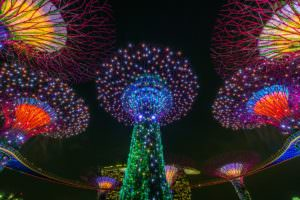 Gardens By the Bay Singapore Supertrees
