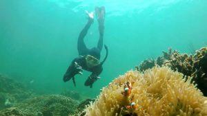 top things to do in batam Reefs Adventure Batam